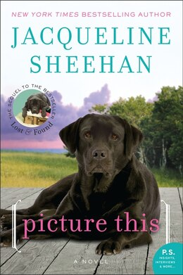 Book Picture This: A Novel by Jacqueline Sheehan