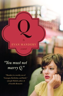 Book Q: A Novel: A Novel by Evan Mandery