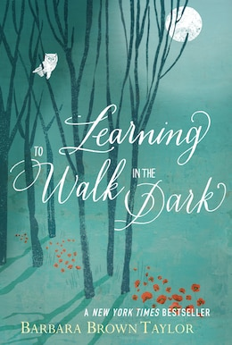 Book Learning To Walk In The Dark by Barbara Brown Taylor