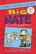 Big Nate: Mr. Popularity: Mr. Popularity