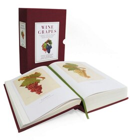 Book Wine Grapes: A Complete Guide to 1,368 Vine Varieties, Including Their Origins and Flavours by Jancis Robinson