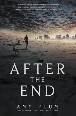 Book After The End by Amy Plum