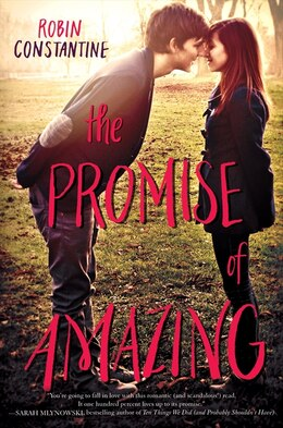 Book The Promise Of Amazing by Robin Constantine