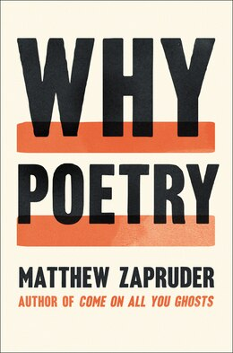 Book Why Poetry by Matthew Zapruder
