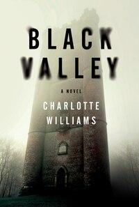 Black Valley: A Novel
