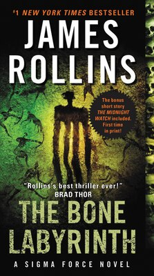 Book The Bone Labyrinth: A Sigma Force Novel by James Rollins