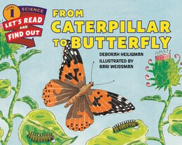 Book From Caterpillar To Butterfly by Deborah Heiligman