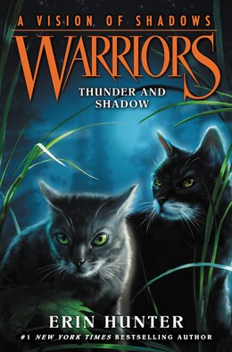 Book Warriors: A Vision of Shadows #2: Thunder and Shadow by Erin Hunter