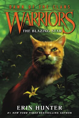 Book Warriors: Dawn of the Clans #4: The Blazing Star by Erin Hunter