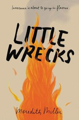 Book Little Wrecks by Meredith Miller