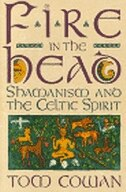 Book Fire In The Head: Shamanism And The Celtic Spirit by Tom Cowan