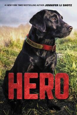 Book Hero by Jennifer Li Shotz