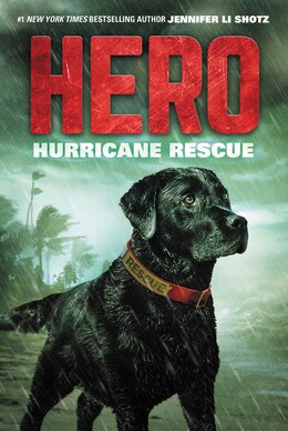 Book Hero: Hurricane Rescue by Jennifer Li Shotz
