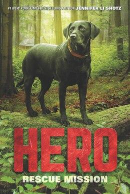Book Hero: Rescue Mission by Jennifer Li Shotz