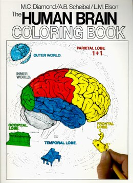 Book The Human Brain Coloring Book by Marian C. Diamond