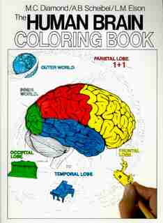 The Human Brain Coloring Book by Marian C. Diamond