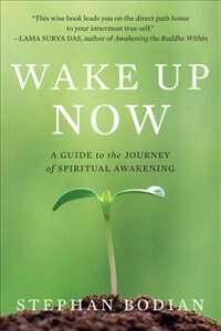 Book Wake Up Now by Stephan Bodian