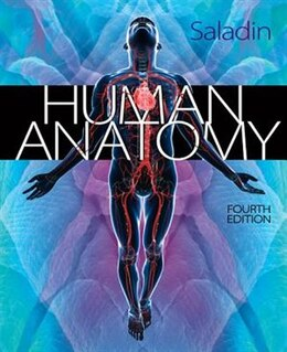 Book Human Anatomy by Kenneth Saladin