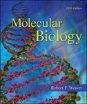 Book Molecular Biology by Robert Weaver