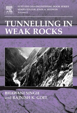 Book Tunnelling In Weak Rocks by Bhawani Singh