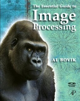 Book The Essential Guide to Image Processing by Alan C. Bovik