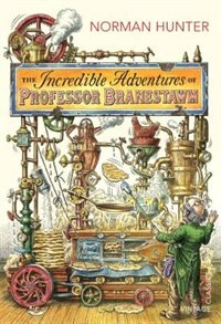 Book The Incredible Adventures Of Professor Branestawm by Norman Hunter