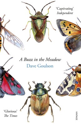 Book A Buzz In The Meadow by Dave Goulson