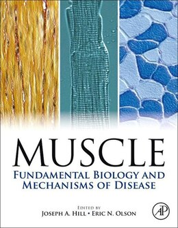 Book Muscle 2-Volume Set: Fundamental Biology and Mechanisms of Disease by Joseph Hill