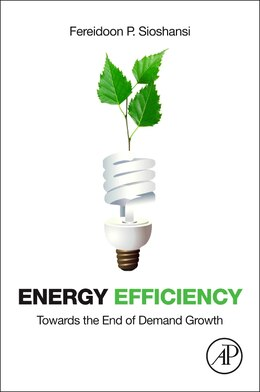 Book Energy Efficiency: Towards The End Of Demand Growth by Fereidoon P. Sioshansi