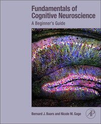 Fundamentals of Cognitive Neuroscience: A Beginner's Guide