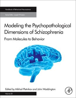 Book Modeling The Psychopathological Dimensions Of Schizophrenia: From Molecules To Behavior by Mikhail Pletnikov