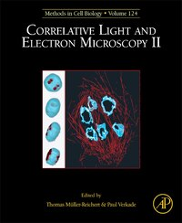 Correlative Light And Electron Microscopy Ii