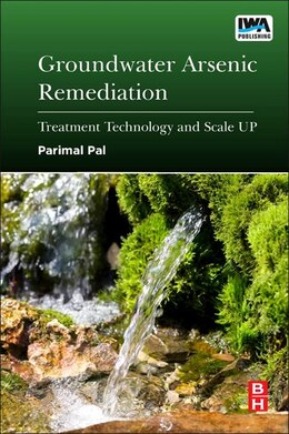 Book Groundwater Arsenic Remediation: Treatment Technology And Scale Up by Parimal Pal