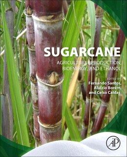 Book Sugarcane: Agricultural Production, Bioenergy And Ethanol by Fernando Santos