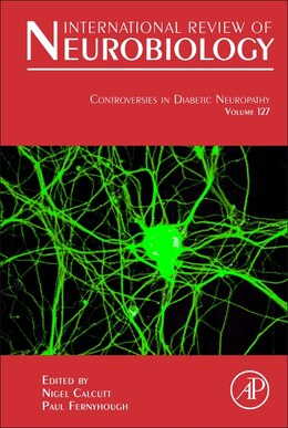 Book Controversies In Diabetic Neuropathy by Nigel Calcutt