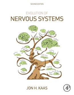Book Evolution Of Nervous Systems by Jon H. Kaas