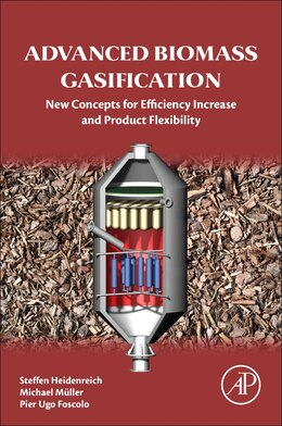 Book Advanced Biomass Gasification: New Concepts For Efficiency Increase And Product Flexibility by Steffen Heidenreich