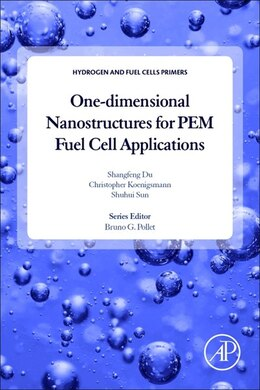 Book One-dimensional Nanostructures For Pem Fuel Cell Applications by Shangfeng Du