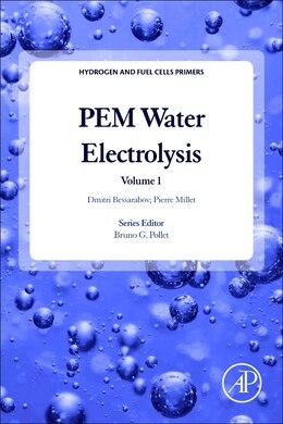 Book Pem Water Electrolysis by Dmitri Bessarabov