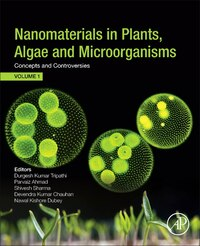 Nanomaterials In Plants, Algae, And Microorganisms: Concepts And Controversies: Volume 1
