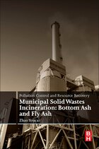 Pollution Control And Resource Recovery: Municipal Solid Wastes Incineration: Bottom Ash And Fly Ash