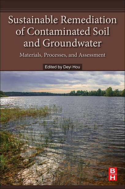 Sustainable Remediation Of Contaminated Soil And Groundwater: Materials, Processes, And Assessment by Deyi Hou