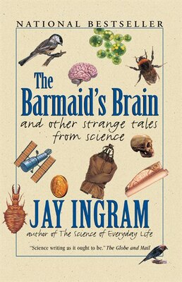 Book Barmaids Brain And Other Strange Tales From Science by Jay Ingram