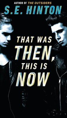 Book That Was Then, This Is Now by S. E. Hinton