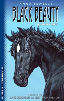 Book Puffin Graphics: Black Beauty by Anna Sewell