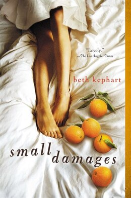 Book Small Damages by Beth Kephart