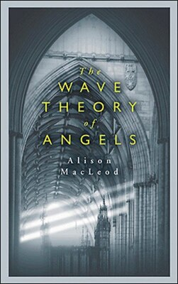 Book Wave Theory Of Angels by Alison Macleod