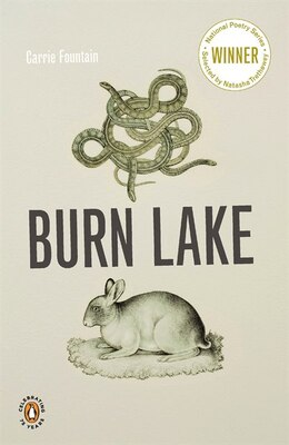 Book Burn Lake by Carrie Fountain
