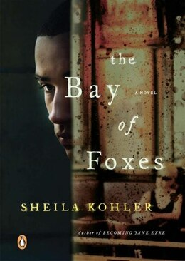 Book The Bay Of Foxes: A Novel by Sheila Kohler