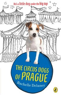The Circus Dogs Of Prague